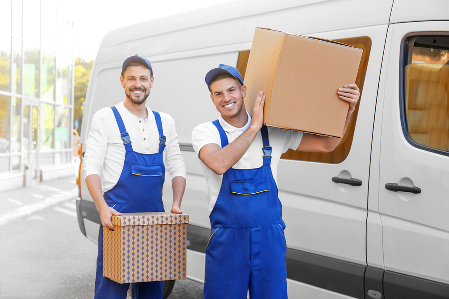 Know About The Role Of The Professional Movers and Experts